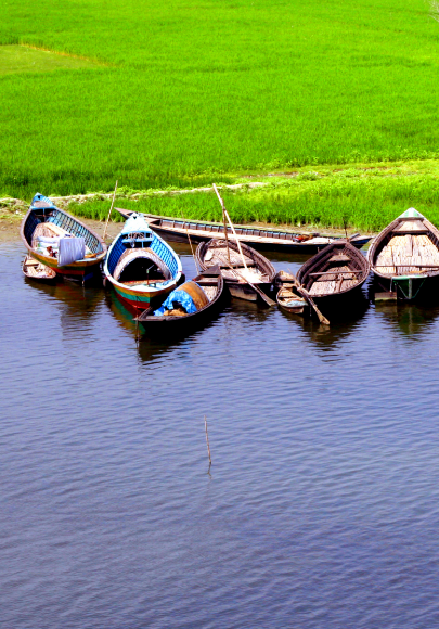 Nine different sized low-passenger boats docked on the edge of a green grass field